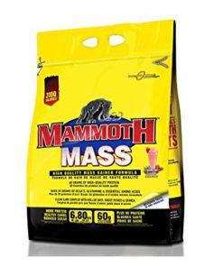 MamoothMass 6.8kg