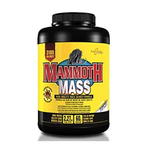 MamoothMass 2 kg