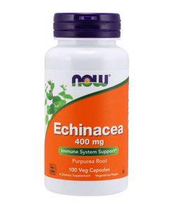 NOW - Echinacea